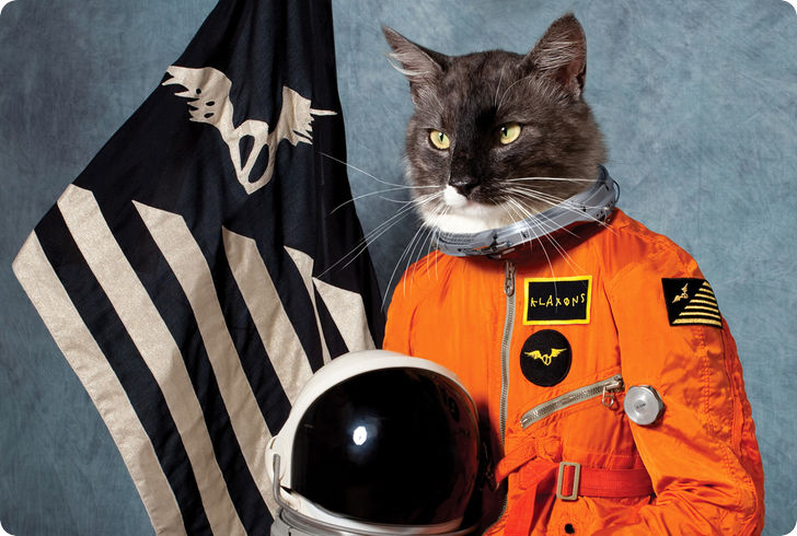 chat-cosmonaute-espace-r-default